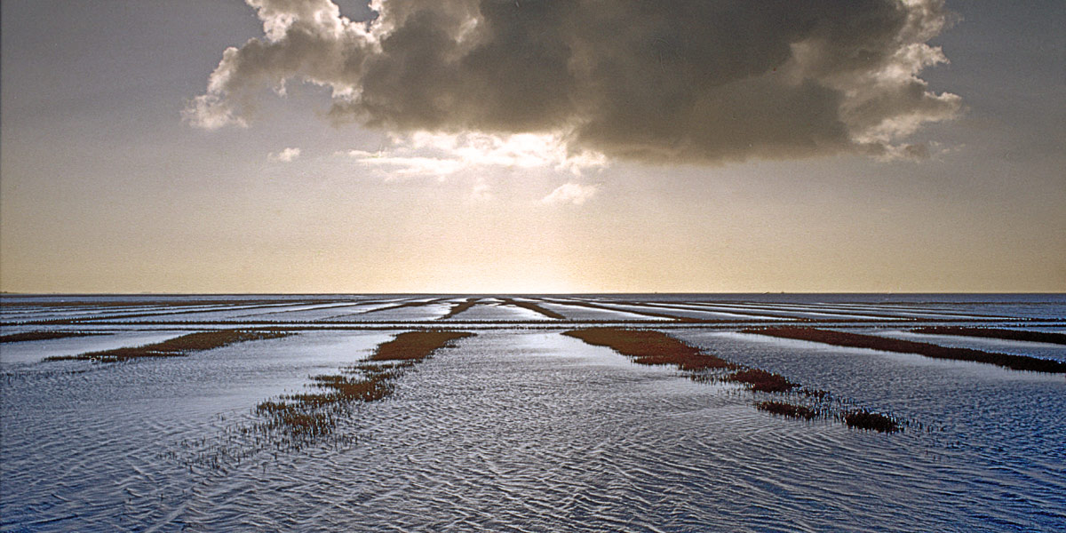 Nordsee2