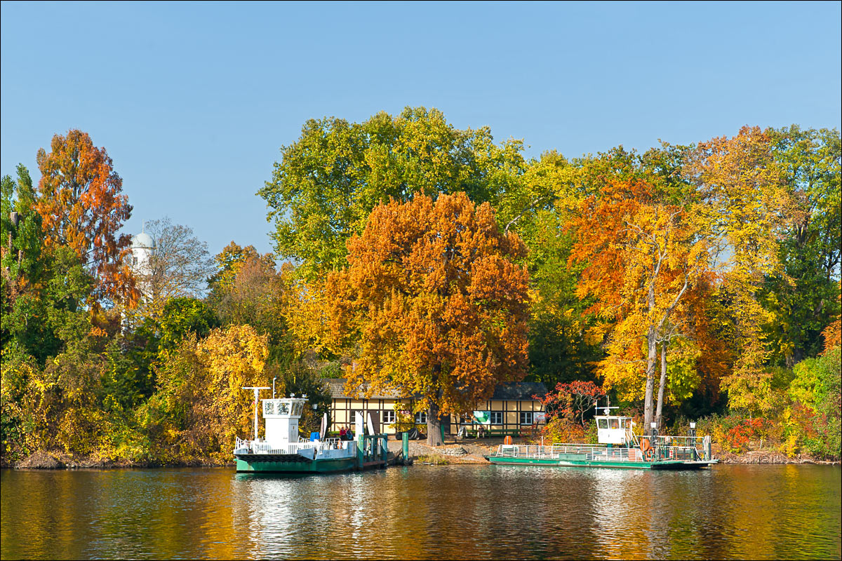 Pfaueninsel_Herbst